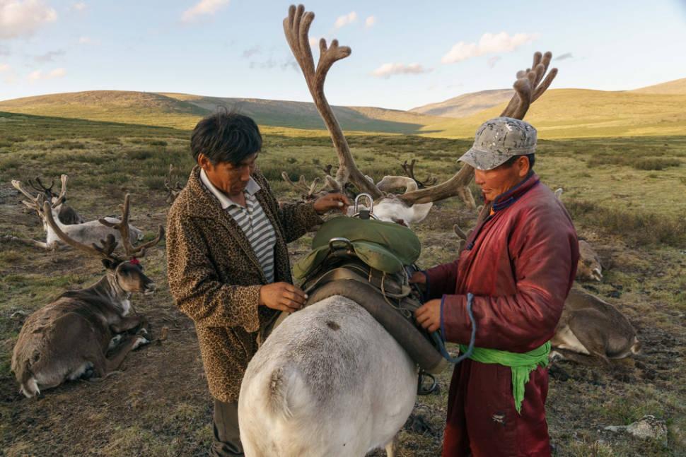 Visiting Tsaatan Tribe in Mongolia - Best Season