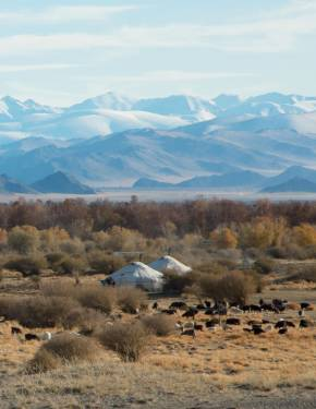 Best time to visit Mongolia