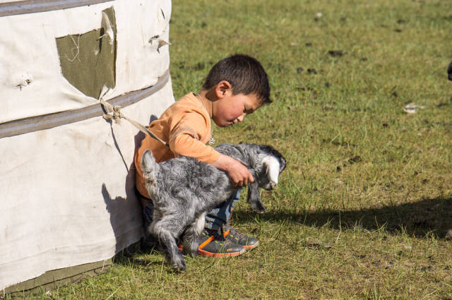 Nomad child with the baby goat