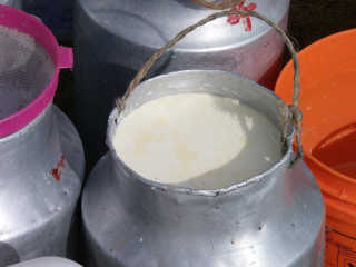 Yak Milk Specialities