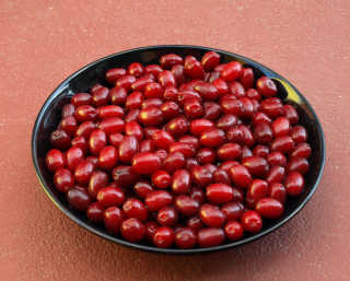Cornelian Cherries or Drenjine