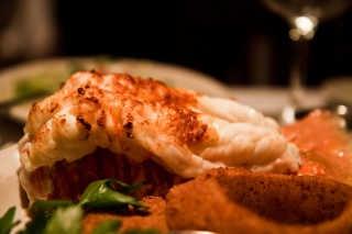Eastern Scheldt Lobster