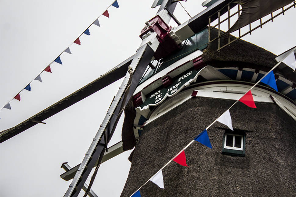 National Mill Day in The Netherlands - Best Season