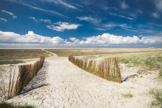 Best time to see Schiermonnikoog in The Netherlands