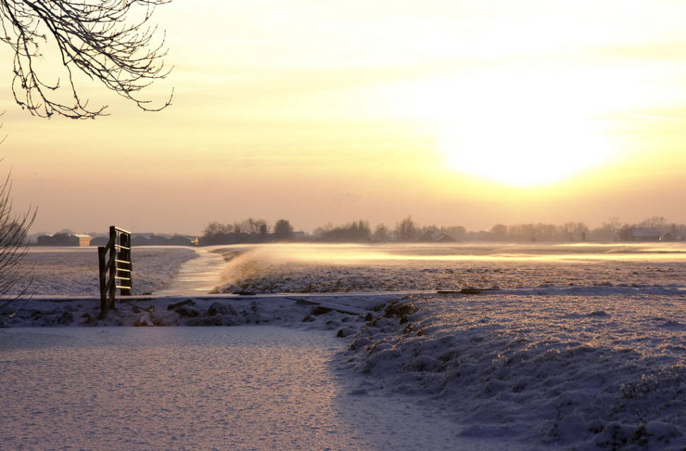 Winter Fun at Hoge Veluwe in The Netherlands - Best Time