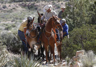 Horseback Riding through Red Rock Canyon