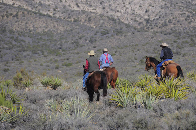 Best time for Horseback Riding through Red Rock Canyon in Nevada