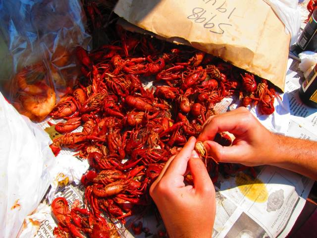 Best time for Crawfish Season in New Orleans