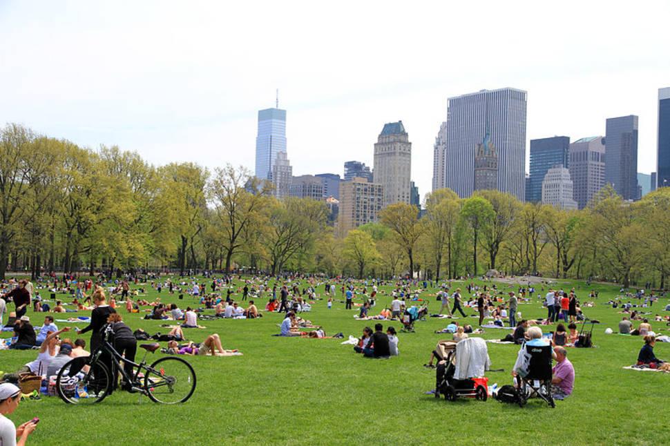Picnic Season in Central Park in New York - Best Season