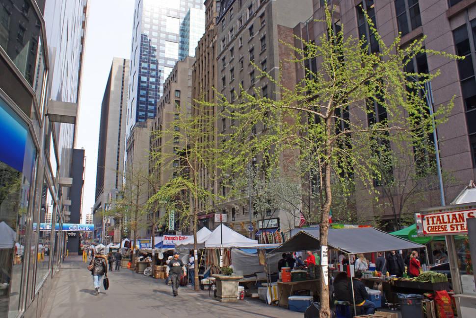 Spring in New York - Best Season