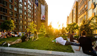 The High Line Sightseeing