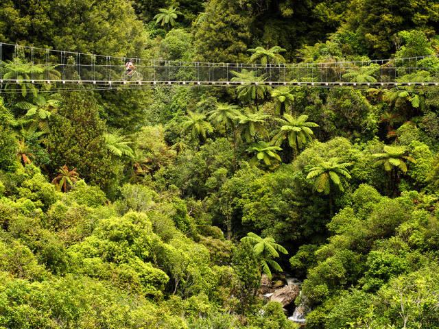 Biking in New Zealand - Best Season