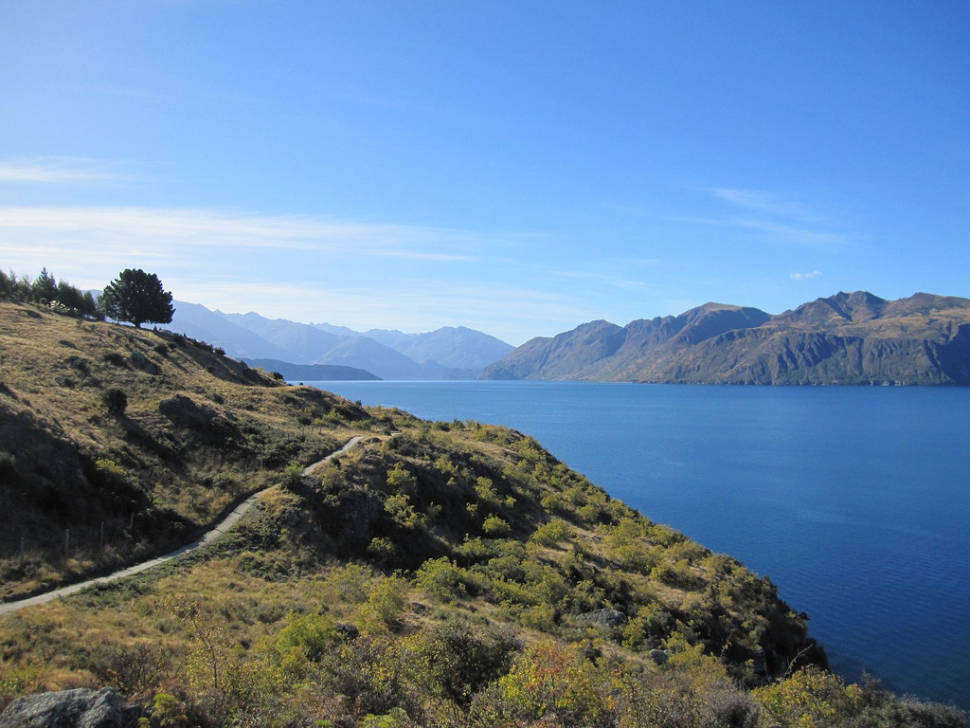 Wanaka side