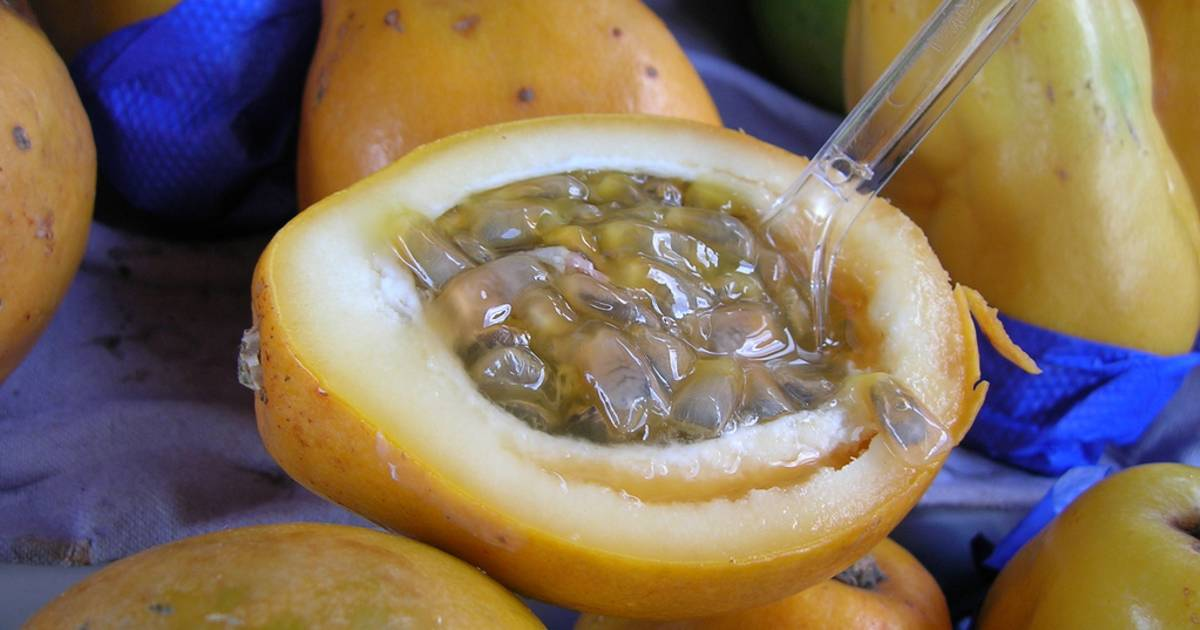 Passionfruit in New Zealand - Best Time