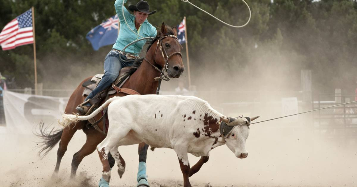 Rodeo in New Zealand - Best Time