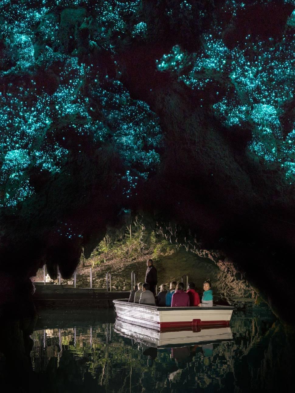 Waitomo Glowworm Caves in New Zealand - Best Season
