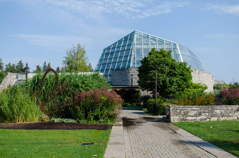 Best time to see Butterfly Conservatory in Niagara Falls