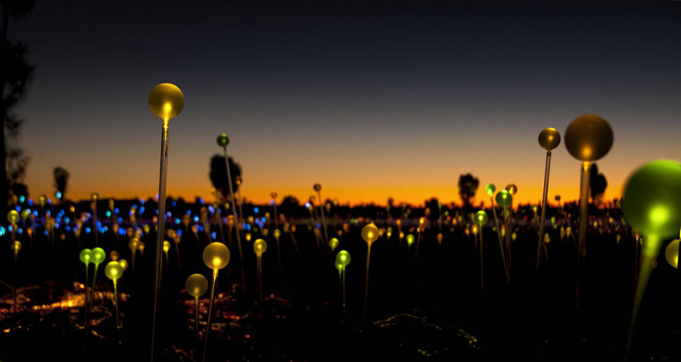 Best time to see Field of Light Uluru in Northern Territory
