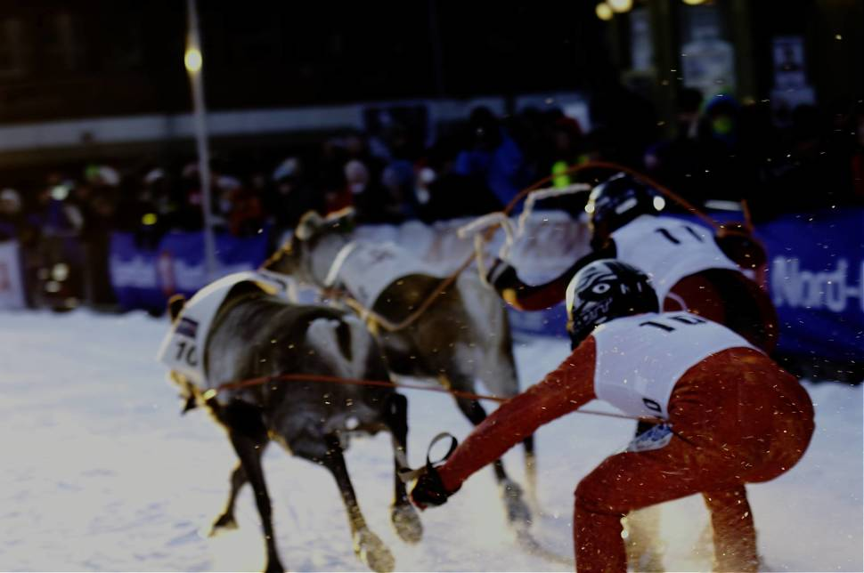 Best time to see World Reindeer Racing Championships in Norway