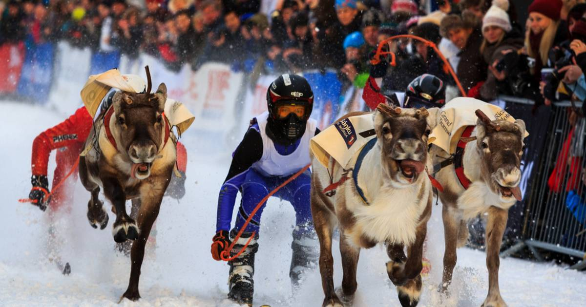 World Reindeer Racing Championships in Norway - Best Time