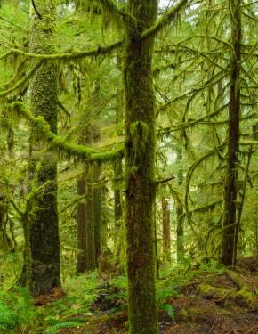 Beste Reisezeit Oregon