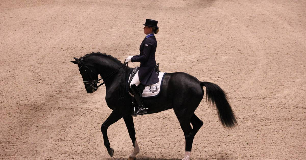 Kingsland Oslo Horse Show in Oslo - Best Time