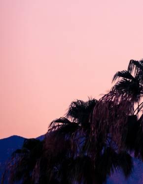 Melhor altura para visitar Palm Springs, CA