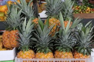 Fruits Season (Dry Season)