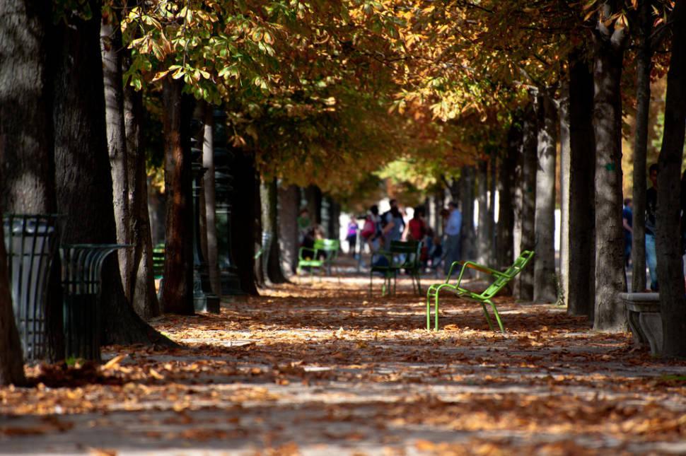 Autumn in Paris - Best Time