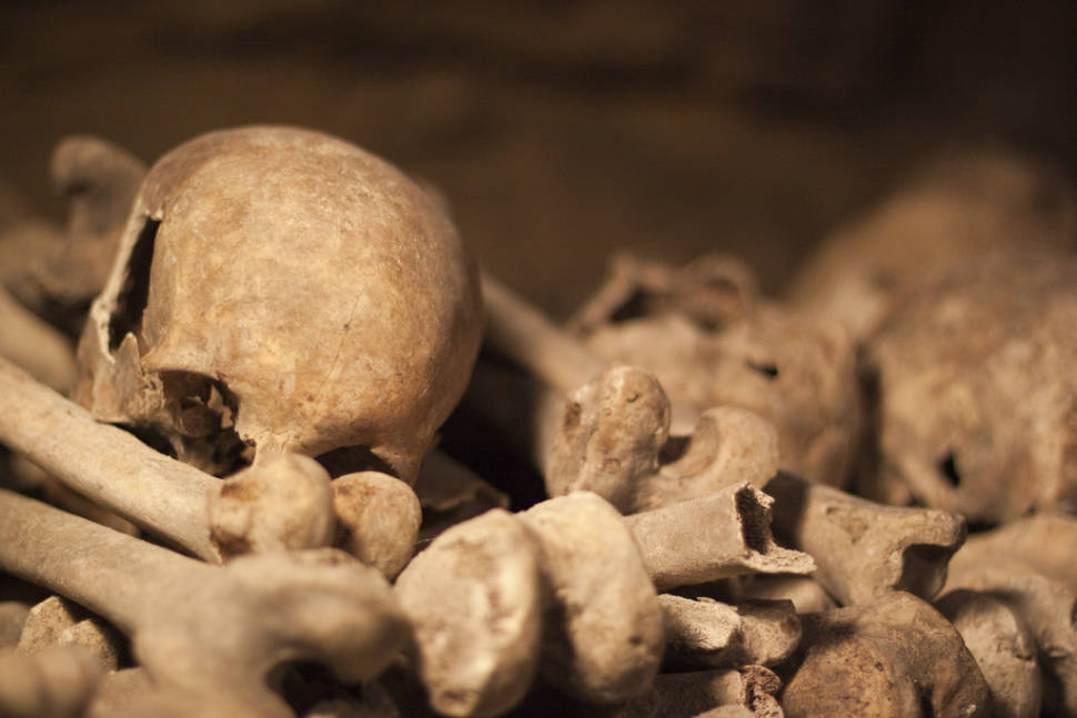 Catacombs: Shorter Waiting Time in Paris - Best Time