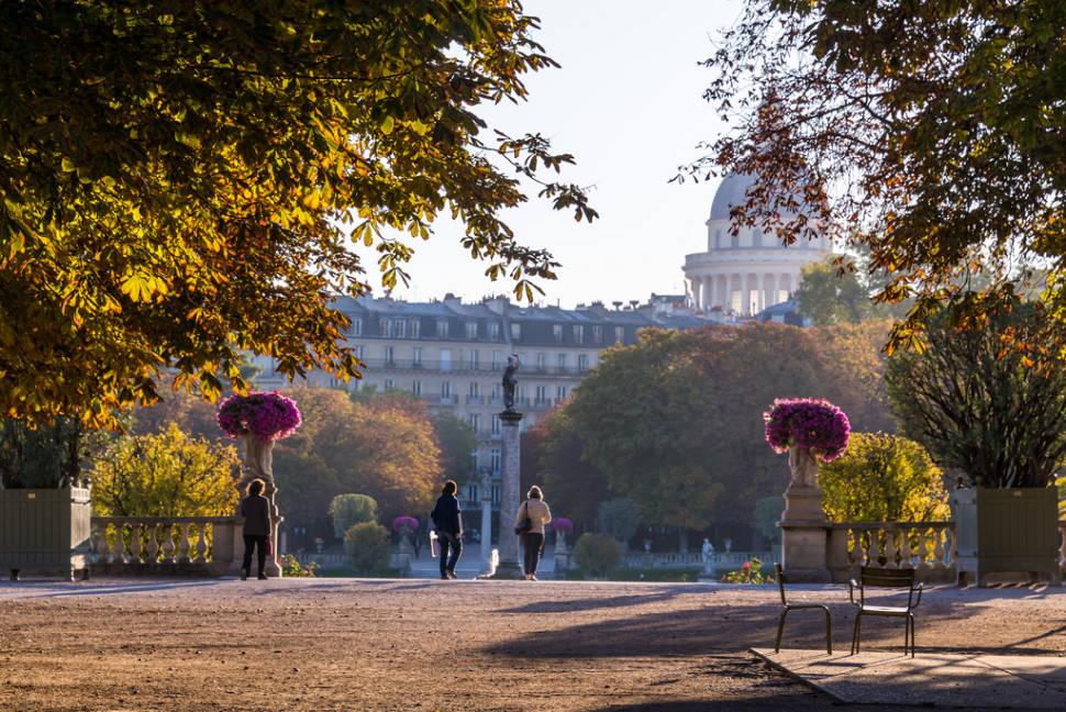 Autumn in the Luxembourg Garden