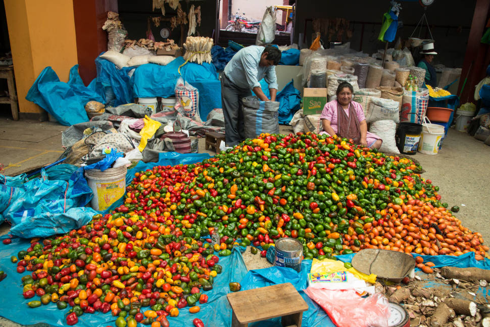 Best time to see Fresh Chili Peppers in Peru