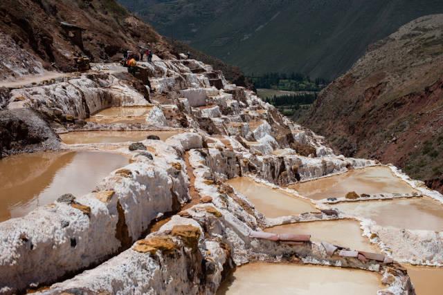 Salt Harvest at Salinas de Maras in Peru - Best Season
