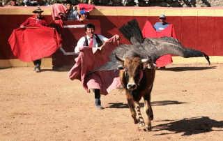 Yawar Fiesta or Festival of Blood