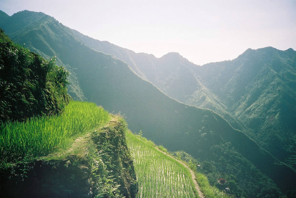 Best time for Banaue and Batad Rice Terraces