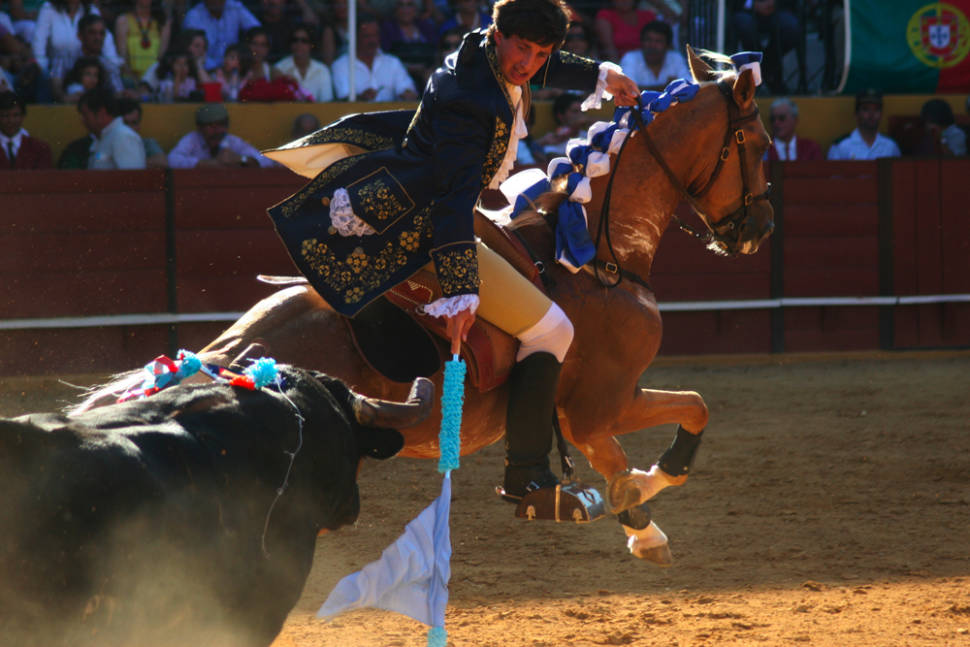 Lisbon Bullfighting in Portugal - Best Season