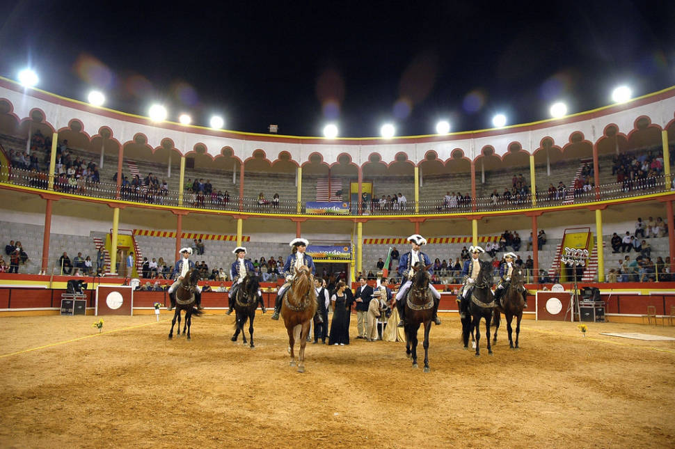 Best time to see Lisbon Bullfighting in Portugal