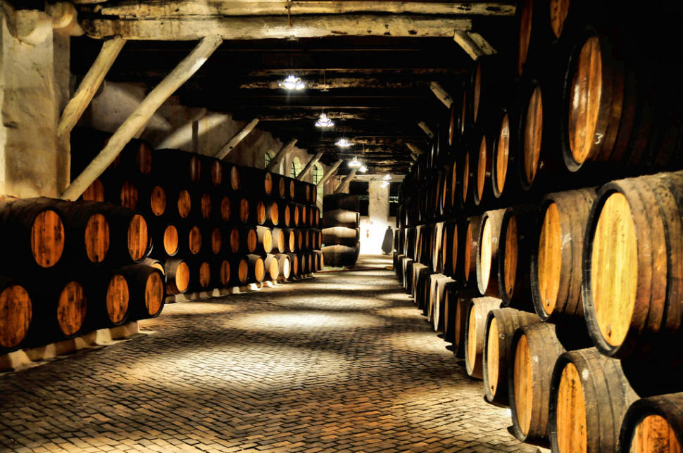 Best time for Wine Season in Portugal