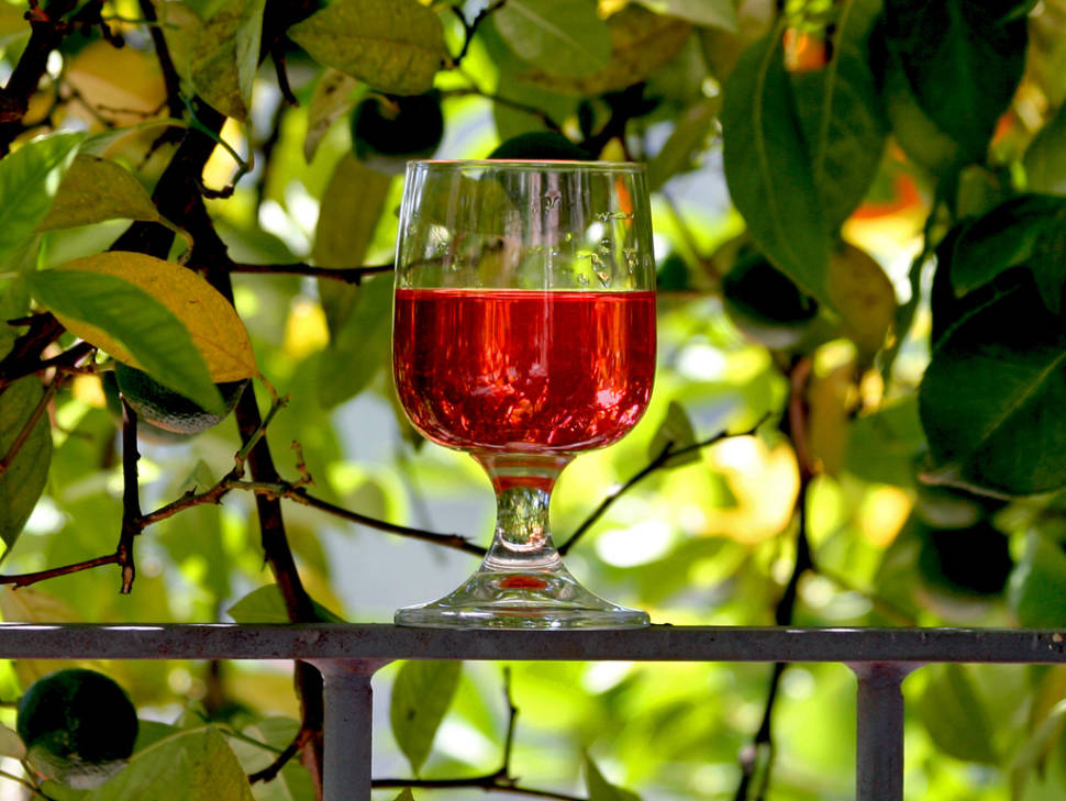 Best time for Wine Season