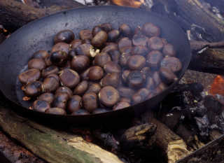 Chestnut Season and Fête de la Châtaigne