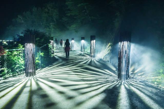 Foresta Lumina in Quebec - Best Time