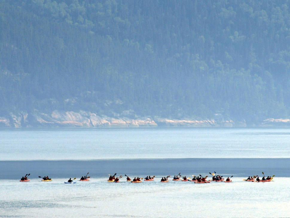 Kayaking Through Saguenay Fjord in Quebec - Best Time
