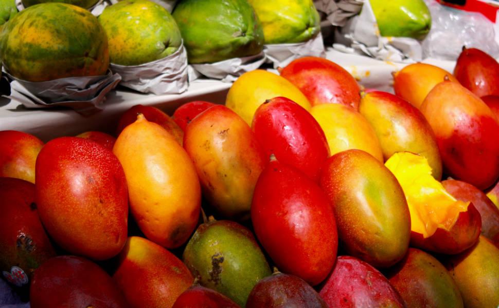 Papaya in Rio de Janeiro - Best Season
