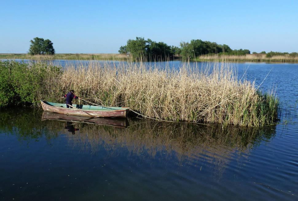 Local fisherman in the Danube Delta