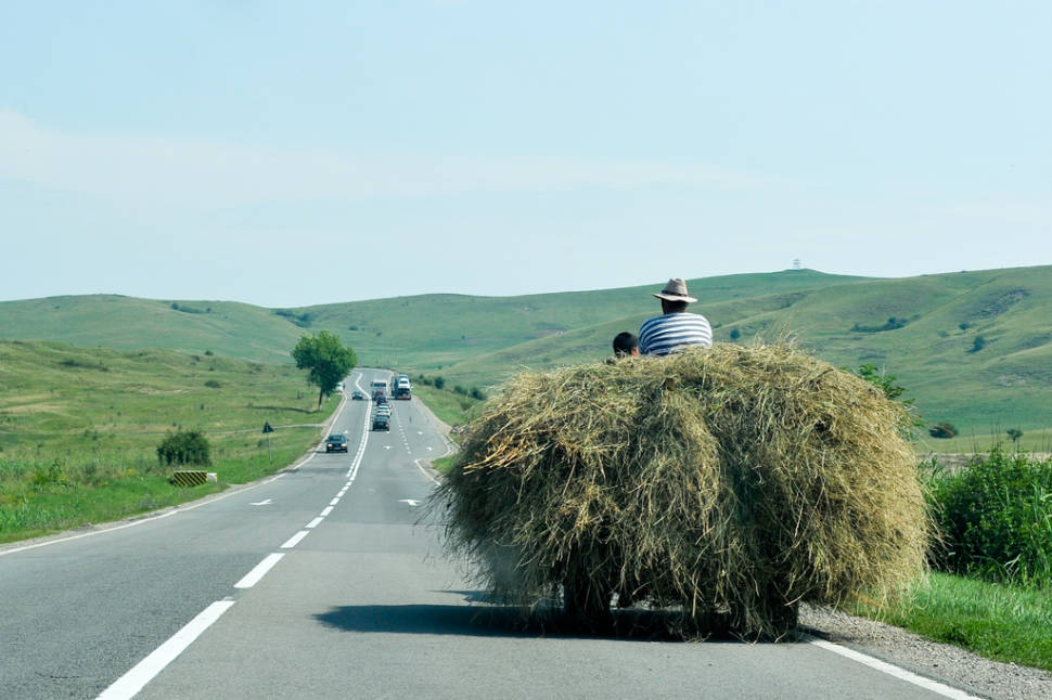 Hay Harvest in Romania - Best Season