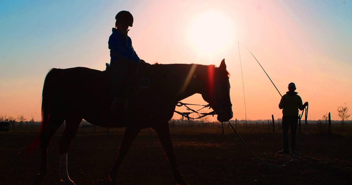 Horseback Riding in Romania - Best Time
