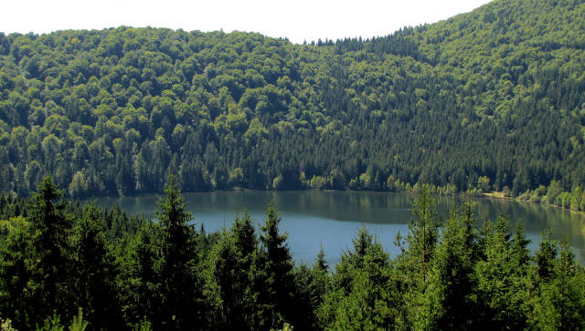 Best time to see Swimming in Lake Sfânta Ana in Romania