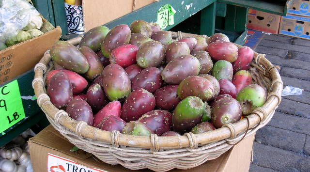 Best time for Cactus Pear in San Francisco
