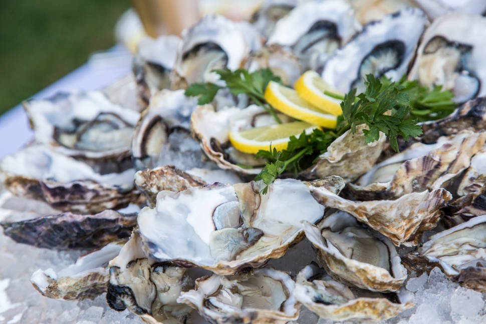 Oyster Season in San Francisco - Best Time