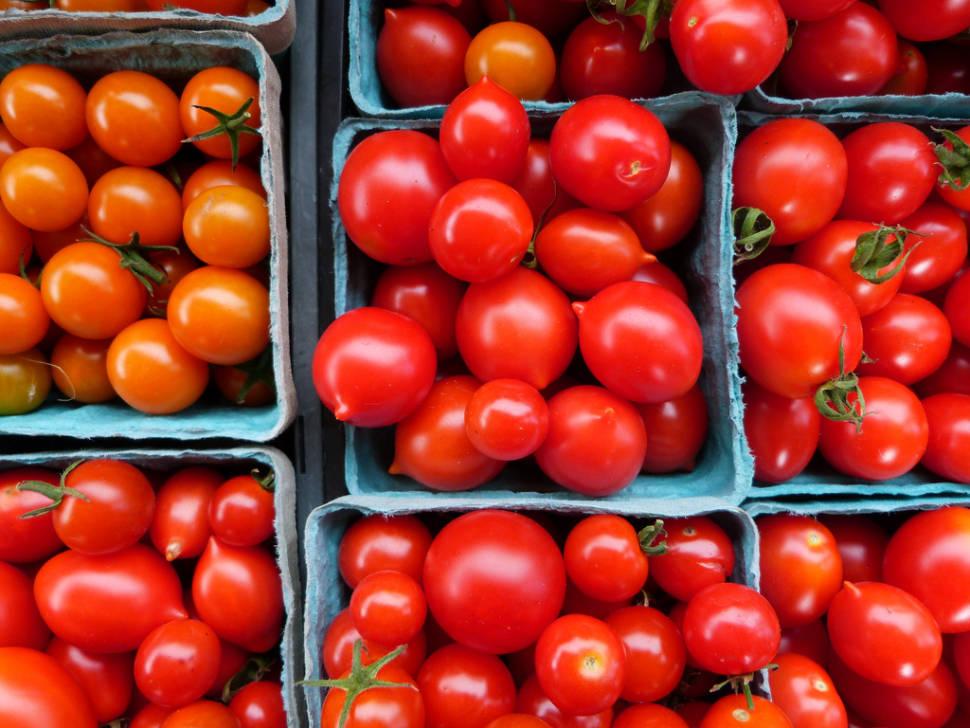 Santorini Cherry Tomatoes in Santorini - Best Time